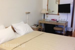 Best Western Candia Hotel_best prices_in_Hotel_Central Greece_Attica_Athens