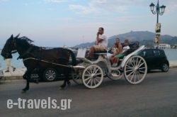 Abby in Athens, Attica, Central Greece