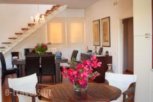 Nina Residence_lowest prices_in_Room_Ionian Islands_Zakinthos_Kypseli
