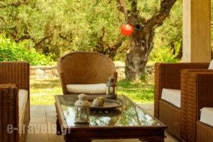 Nina Residence_holidays_in_Room_Ionian Islands_Zakinthos_Kypseli
