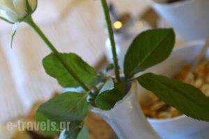 Parnis Palace_holidays_in_Hotel_Central Greece_Attica_Athens