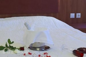 Parnis Palace_accommodation_in_Hotel_Central Greece_Attica_Athens