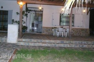 Rose Garden Holiday Home_holidays_in_Hotel_Central Greece_Attica_Athens
