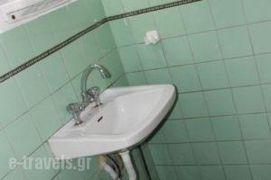 Mikonos Apartment_best prices_in_Apartment_Central Greece_Attica_Athens
