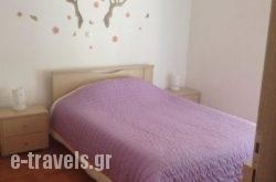 Ifigenia's Apartment in Athens, Attica, Central Greece