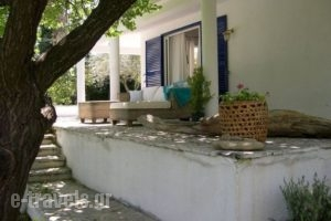 Villas Ftelia_best prices_in_Villa_Sporades Islands_Skiathos_Skiathos Chora