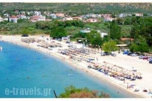 Sissy's Villas_best deals_Villa_Aegean Islands_Thasos_Potos