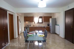 Villa Elena&Areti_accommodation_in_Villa_Crete_Rethymnon_Loutra